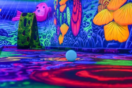 Black light park - het recreatie- en uitgaanscentrum