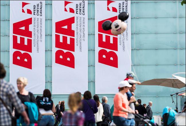 Bernexpo: Frankenstärke fordert das Berner Messeteam – Gutes Ergebnis für  2015 erwartet - schweizeraktien.net