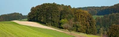 Das Geschäftsgebiet der SLB ist ruhig und beschaulich und vor allem durch die Landwirtschaft geprägt. Quelle: Spar- und Leihkasse Bucheggberg AG