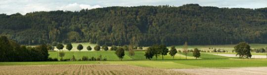 Im landwirtschaftlich geprägten Geschäftsgebiet der SLB sind wenig Überraschungen zu erwarten. Quelle: SLB