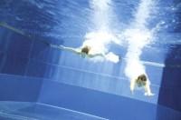 Dpd wert pool zu niedrig  Schwimmbad und Saunen