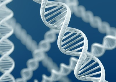 Beyond the Gene: Epigenetic Science in 21st Century Culture