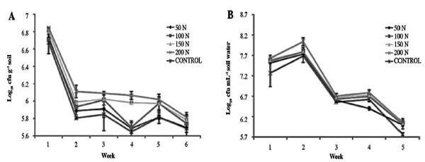 Effect of urea-N on growth and indoleacetic acid