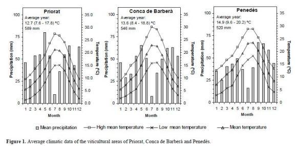 HOW SOIL FORMING PROCESSES DETERMINE SOIL-BASED