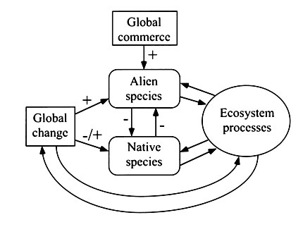 Disruption of ecosystem processes in western North America