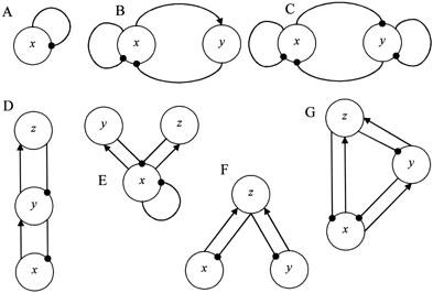 ¿Por qué importa la dimensión en modelos ecológicos?
