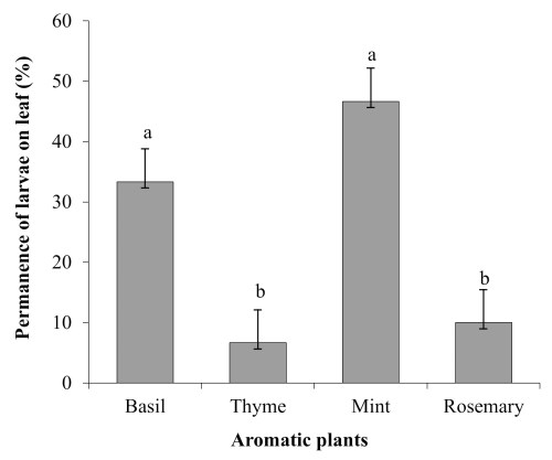 small resolution of figure 4 permanence test of copitarsia uncilata 3rd instar versus four aromatic plants basil thyme mint and rosemary bars represent standard error