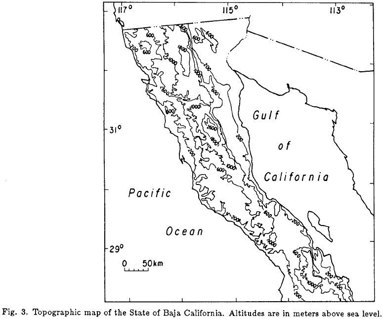 The El Niño/Southern Oscillation and Precipitation