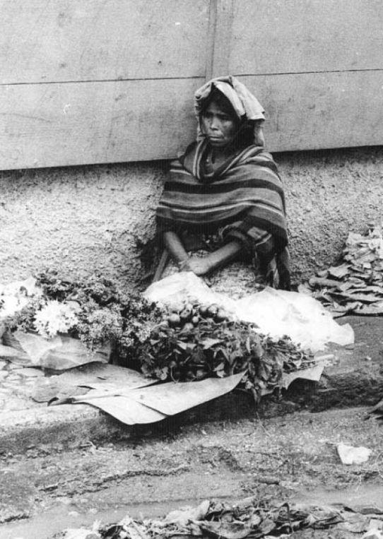 Pobreza y marginacin en Mxico