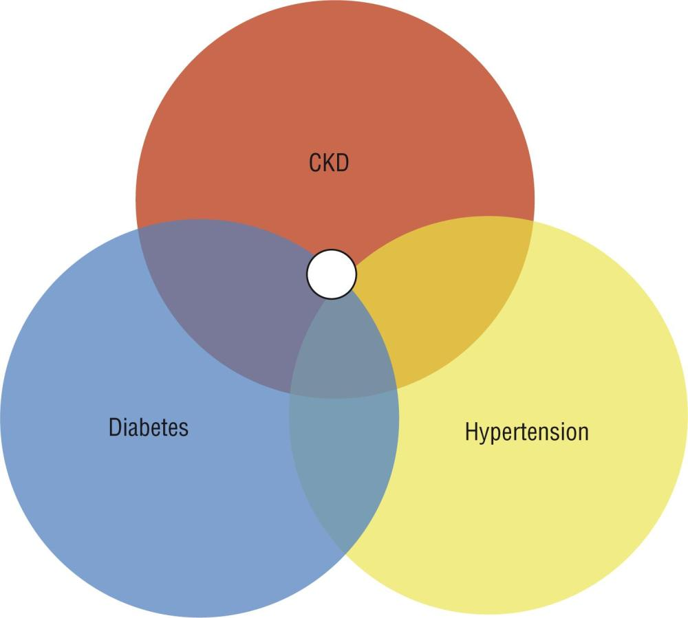 medium resolution of figure 1 venn diagram demonstrating chronic kidney disease of nontraditional etiology ckdnt through the association of chronic kidney disease diabetes