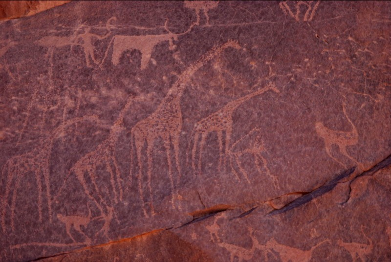 Gilf_Kebir_jan_2007_rock_carvings