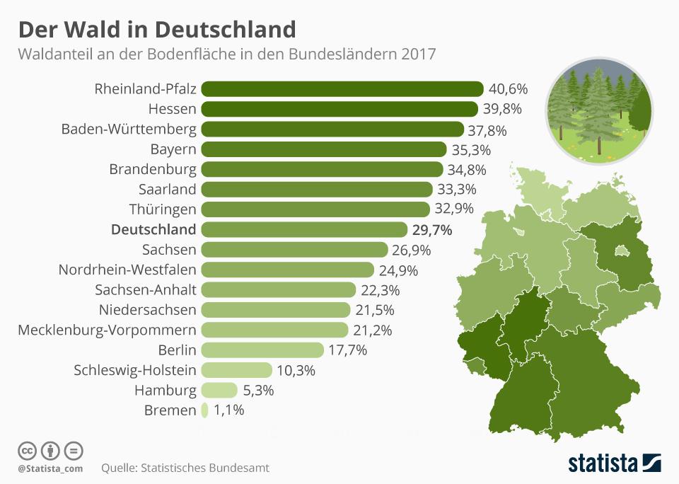 infografik_13293_waldflaeche_in_den_bundeslaendern_n