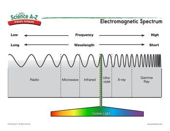 Visible Light Printable Worksheets 8th Grade Science