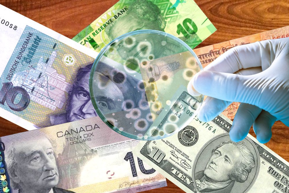 Diagram Of Germs Are Currency Notes Really Full Of Germs 187 Science Abc