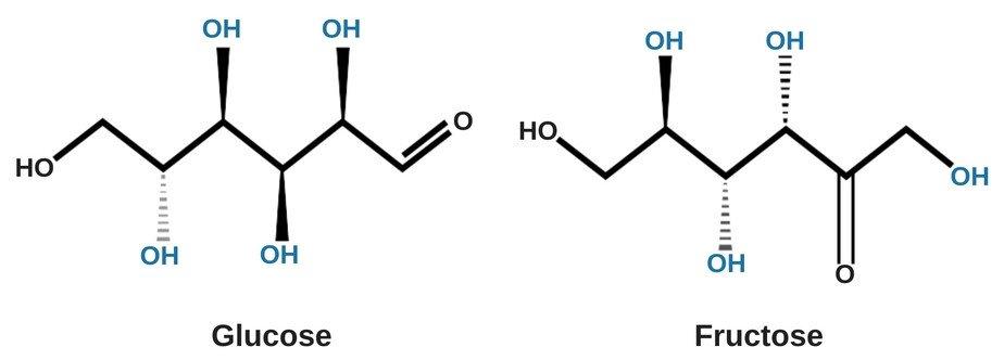 Sugar Water Particle Diagram