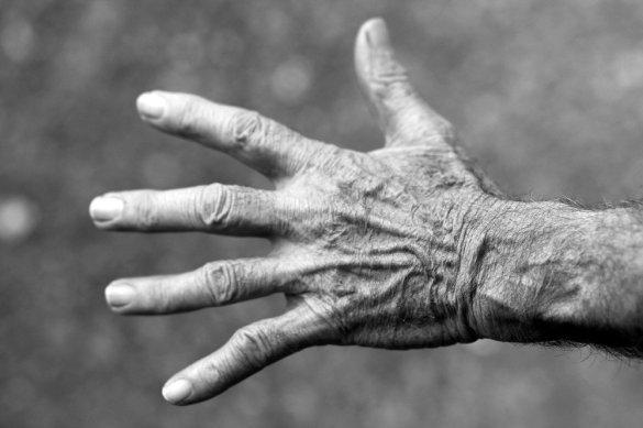 Mão, mulher idosa, rugas, preto e branco