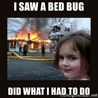 10 Myths And Misconceptions About Bed Bugs  Science ABC