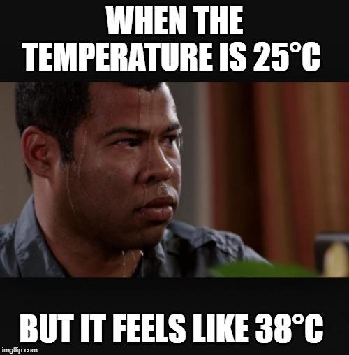QUANDO A TEMPERATURA É DE 25 ° C;  Mas se sente como meme