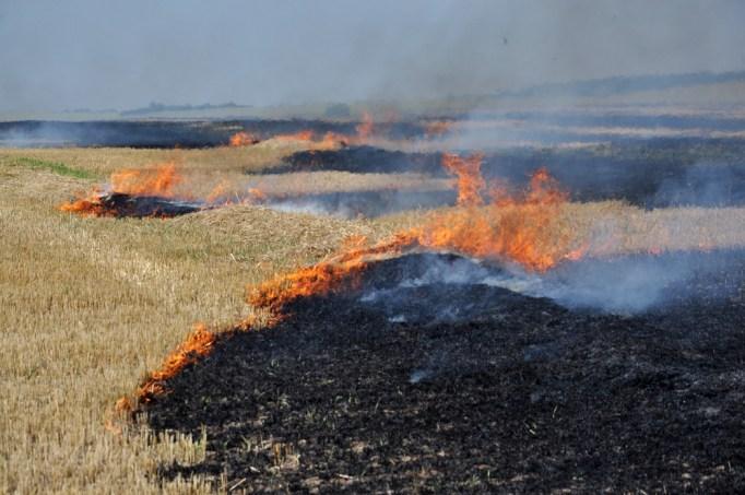 No campo, após a colheita de grãos queimando restolho e palha (Orest lyzhechka) s