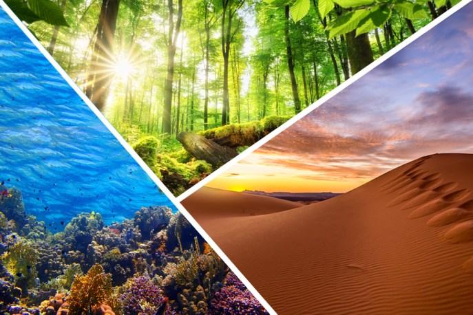 Nosso planeta Terra e seus diversos ecossistemas