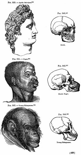 Subliminal Experiments Uncover Deep-Seated Racism