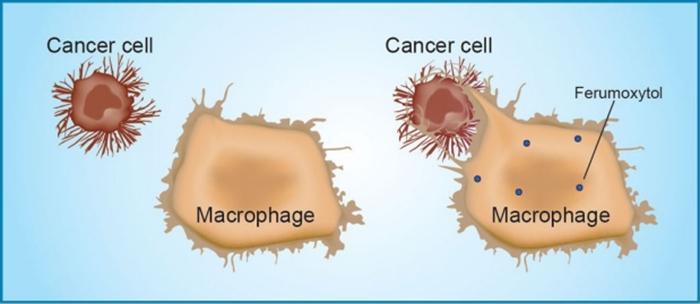 cancer-2