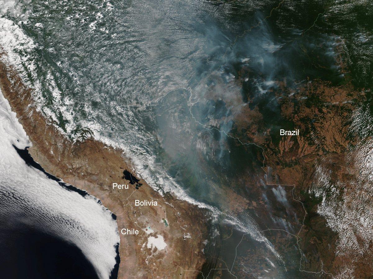 Satellite image of the burning rainforest on August 12. (NOAA)