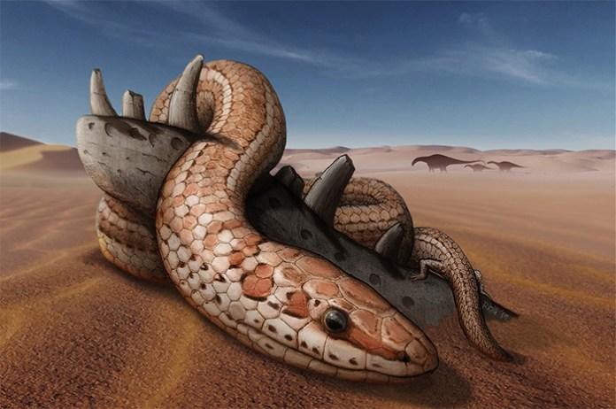 najash snake artist impression
