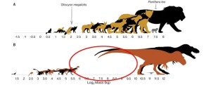 We finally know why dinosaurs were either funny or tiny, unlike modern animals.