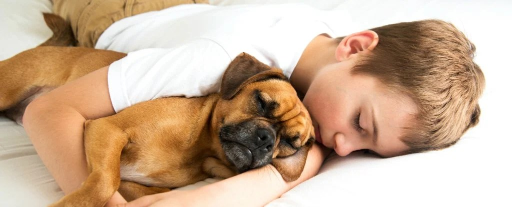 Sleeping With Your Pet Could Help You Get a Better Nights
