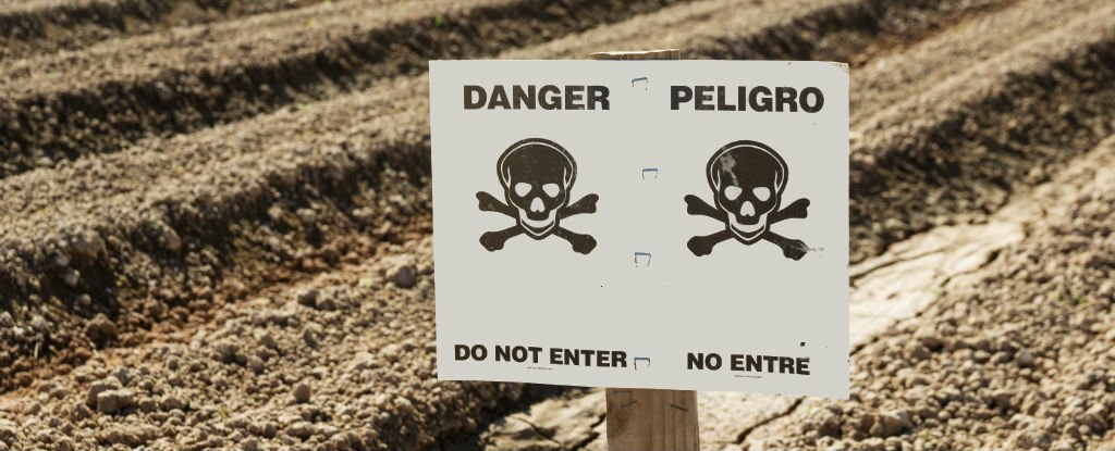 WATCH 5 of The Worlds Most Dangerous Chemicals