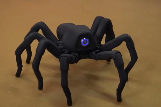 WATCH Adam Savages incredible robot spider