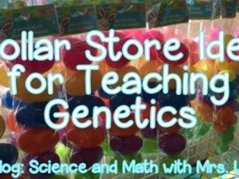 Dollar Store Idea for Teaching Genetics