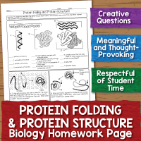 Protein Structure Worksheet