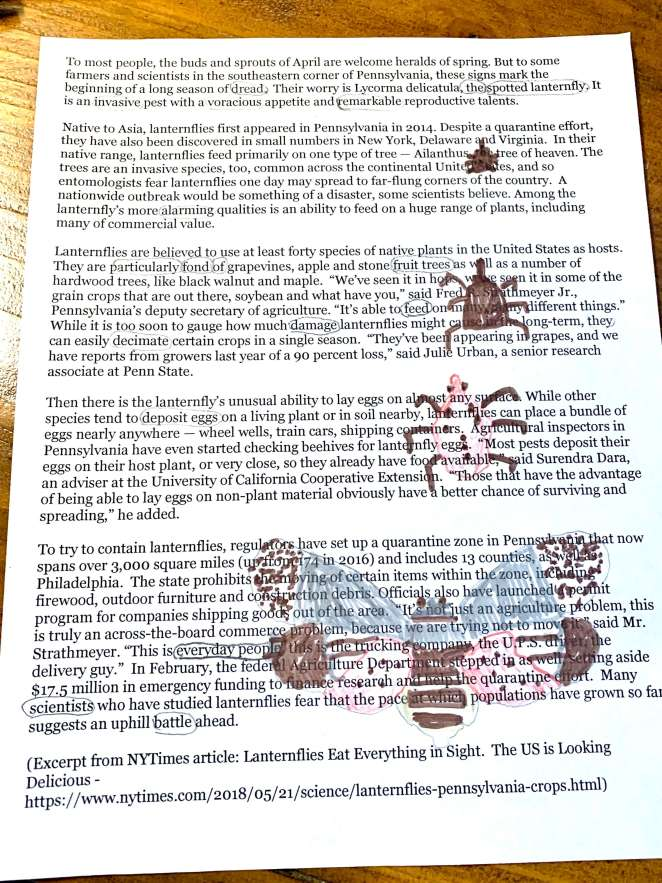 Spotted lantern fly science blackout poetry process