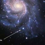 Supernova 2011fe (Image: B. J. Fulton, Las Cumbres Observatory Global Telescope Network.)