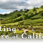 Celebrating the Nature of California