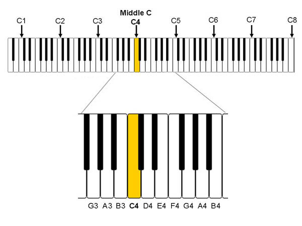 Comparing Vocal Ranges: How High and Low Can You Go?