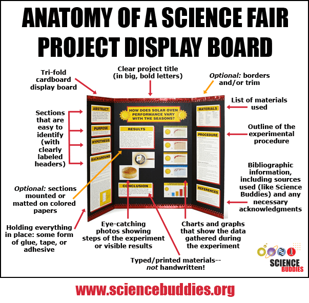 Science Fair Order Science Fair Project Putting Together A Project