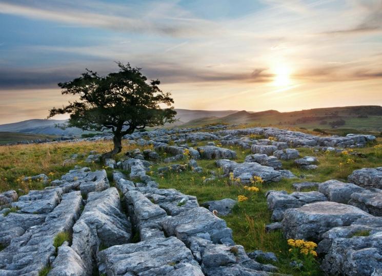 Kalksteenstenen in het zuiden van Engeland