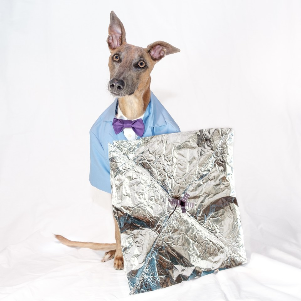 Kuiper wears a bowtie and a labcoat. He is posing with a model of the spacecraft made of tinfoil.