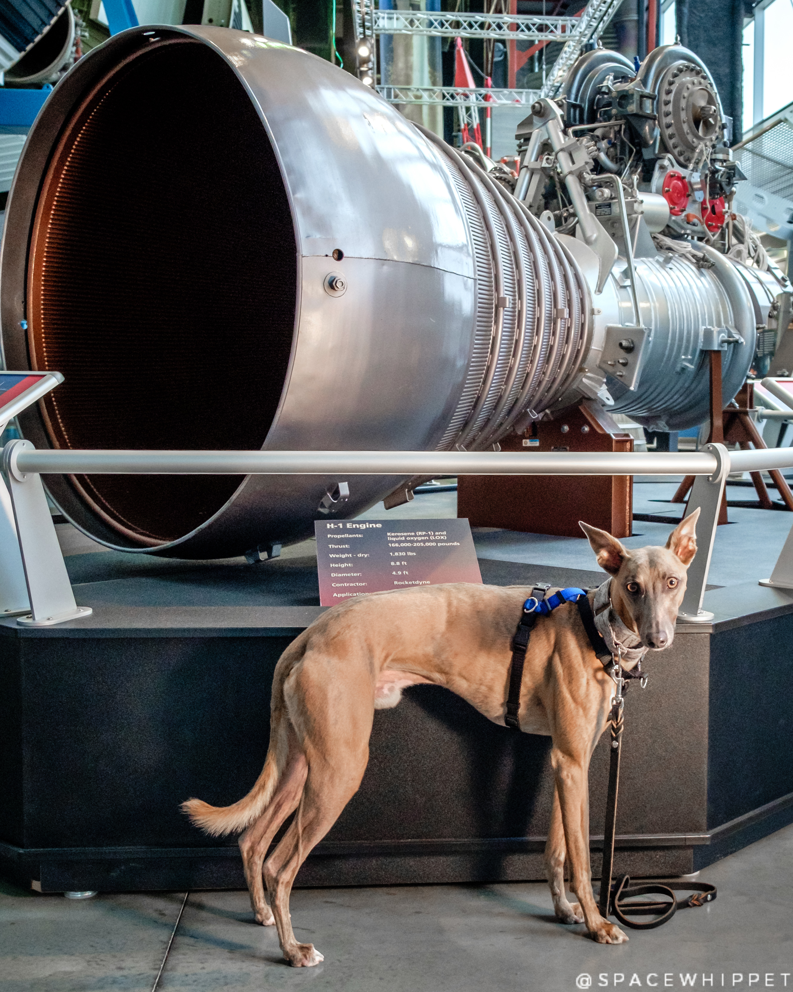 Kuiper poses with a Rocketdyne H-1 rocket engine at US Space and Rocket center