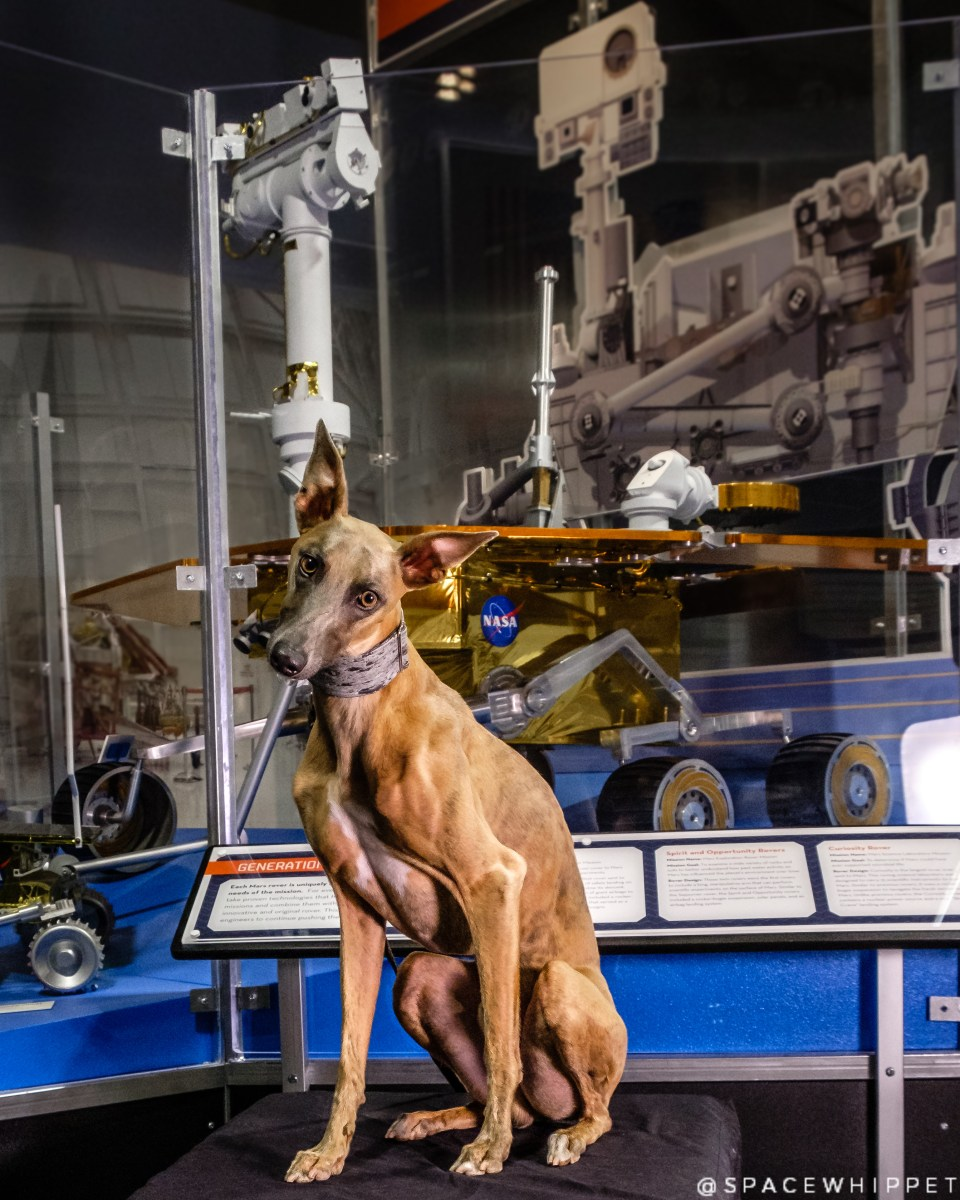 Kuiper poses with a model Mars rover.