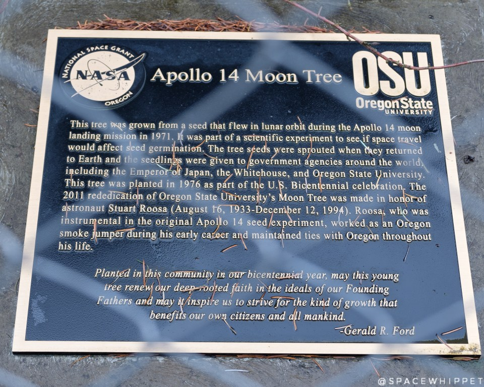 Apollo 14 Moon Tree plaque
