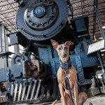 Kuiper sits in front of a steam locomotive.