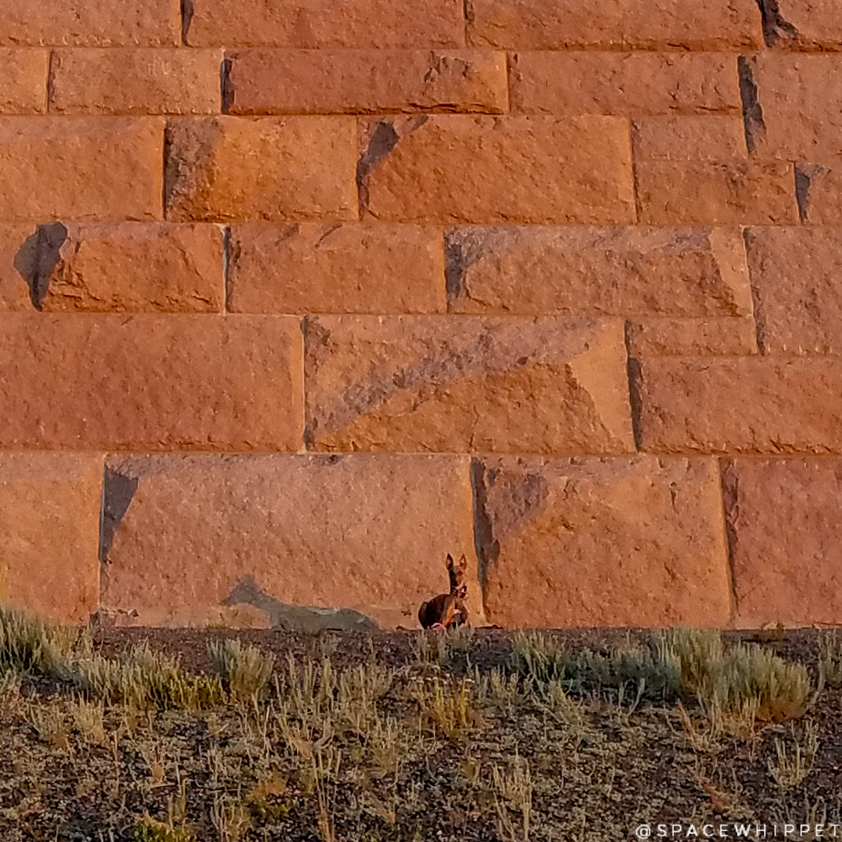 """Zoomed in shot of Kuiper doing a """"Sphynx down"""" at the Ames pyramid."""