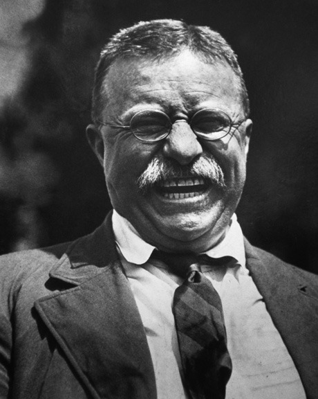 picture of president teddy roosevelt
