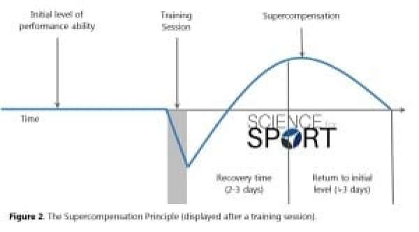 Figure 2 - Supercompensation Principle stretching for recovery science for sport