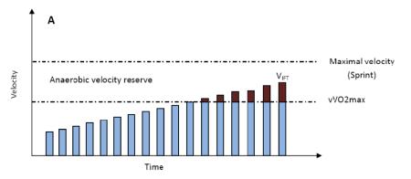 MAS and Anaerobic Velocity Reserve