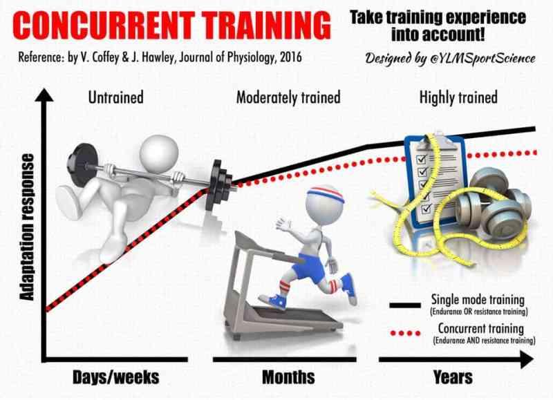 Concurrent Training